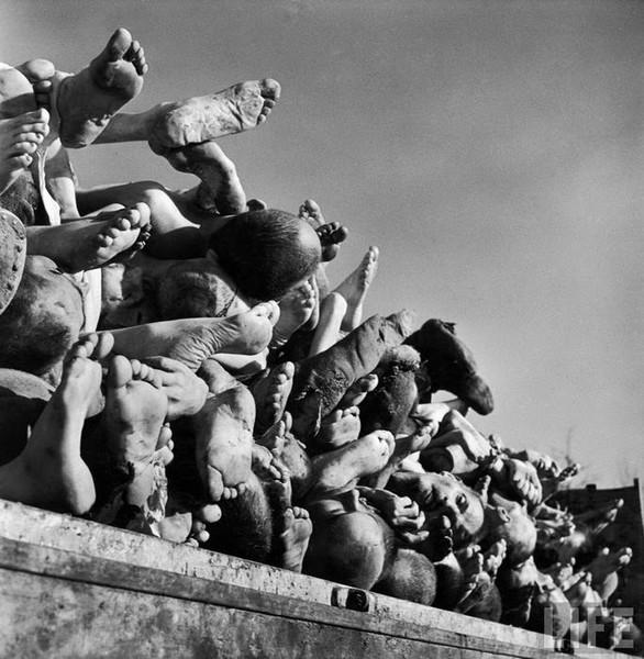 the holocaust buchenwald Buchenwald memorial | gedenkstätte buchenwald (genozid holocaust) ich glaube die jungs sollten allen einmal in buchenwald einen ausflug machen.