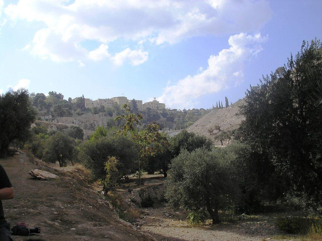 Долина Гееном в 2007 году.